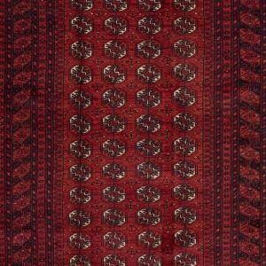 Orientální koberec Sheberghan Turkmen 320 x 227 cm