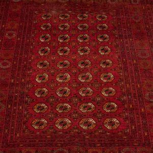 Orientální koberec Sheberghan Turkmen 268 x 201 cm